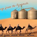 Love the camels